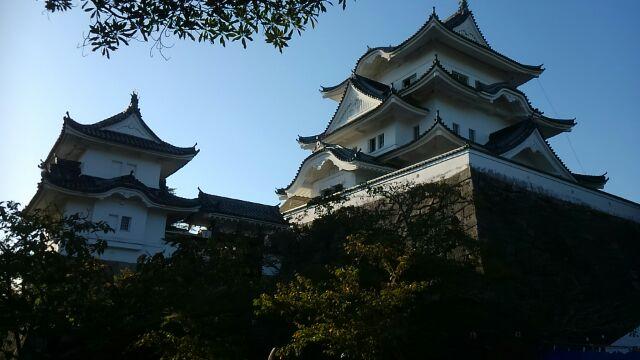 長良川鵜飼と百名城